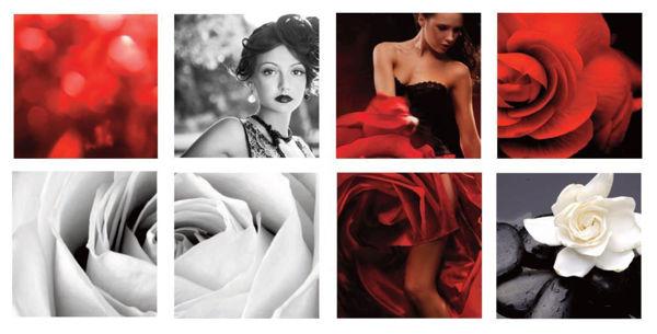 Hình ảnh Scarlet Beauty Canvas
